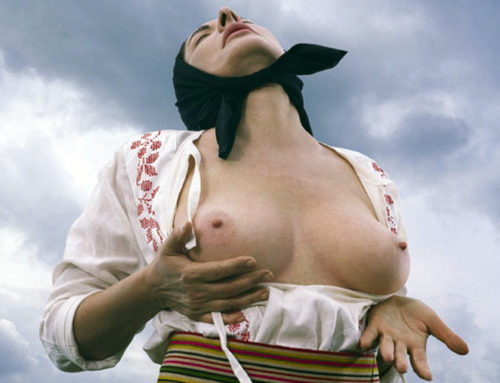 Teorijski osvrt na dokumentarni film Balkan Epic Erotic Marine Abramović